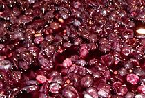 Organic grape skins